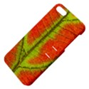 Nature Leaves Apple iPhone 5 Hardshell Case with Stand View4