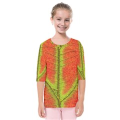 Nature Leaves Kids  Quarter Sleeve Raglan Tee