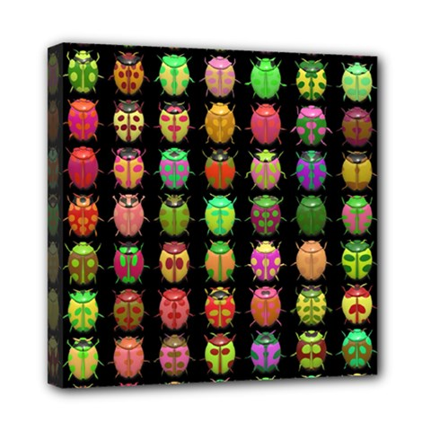 Beetles Insects Bugs Mini Canvas 8  X 8