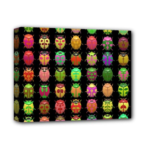 Beetles Insects Bugs Deluxe Canvas 14  X 11  by BangZart