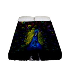 Beautiful Peacock Feather Fitted Sheet (full/ Double Size) by BangZart