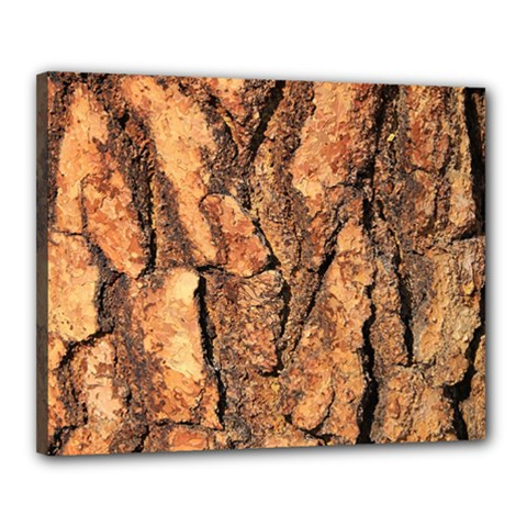Bark Texture Wood Large Rough Red Wood Outside California Canvas 20  X 16  by BangZart