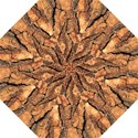 Bark Texture Wood Large Rough Red Wood Outside California Straight Umbrellas View1