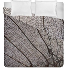 Sea Fan Coral Intricate Patterns Duvet Cover Double Side (king Size) by BangZart