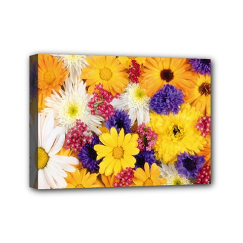 Colorful Flowers Pattern Mini Canvas 7  X 5  by BangZart