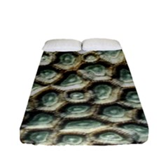 Ocean Pattern Fitted Sheet (full/ Double Size)