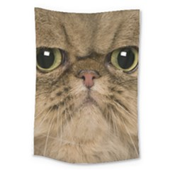 Cute Persian Catface In Closeup Large Tapestry by BangZart