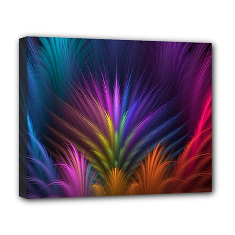 Colored Rays Symmetry Feather Art Deluxe Canvas 20  X 16   by BangZart