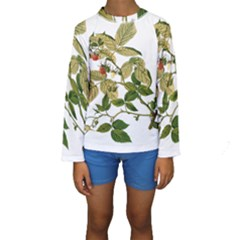 Berries Berry Food Fruit Herbal Kids  Long Sleeve Swimwear by Nexatart