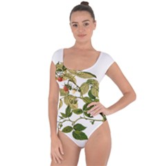 Berries Berry Food Fruit Herbal Short Sleeve Leotard