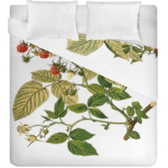 Berries Berry Food Fruit Herbal Duvet Cover Double Side (king Size) by Nexatart