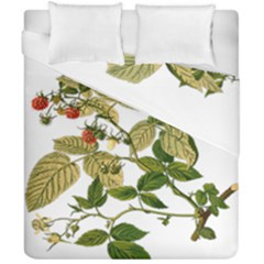 Berries Berry Food Fruit Herbal Duvet Cover Double Side (california King Size) by Nexatart