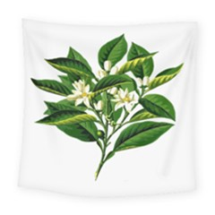 Bitter Branch Citrus Edible Floral Square Tapestry (large)