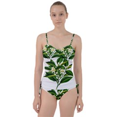 Bitter Branch Citrus Edible Floral Sweetheart Tankini Set