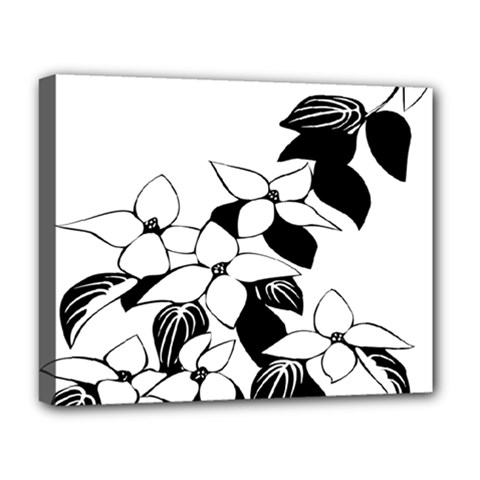 Ecological Floral Flowers Leaf Deluxe Canvas 20  X 16   by Nexatart