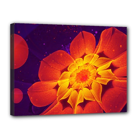 Royal Blue, Red, And Yellow Fractal Gerbera Daisy Canvas 16  X 12  by jayaprime