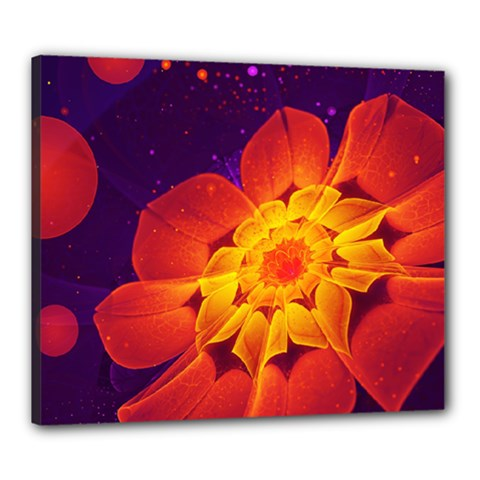 Royal Blue, Red, And Yellow Fractal Gerbera Daisy Canvas 24  X 20  by jayaprime