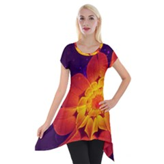 Royal Blue, Red, And Yellow Fractal Gerbera Daisy Short Sleeve Side Drop Tunic by jayaprime