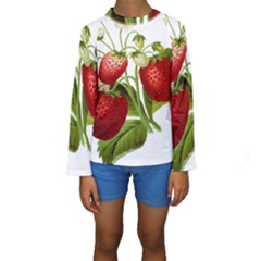 Food Fruit Leaf Leafy Leaves Kids  Long Sleeve Swimwear by Nexatart