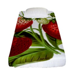 Food Fruit Leaf Leafy Leaves Fitted Sheet (single Size) by Nexatart