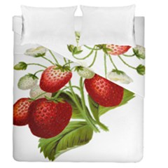 Food Fruit Leaf Leafy Leaves Duvet Cover Double Side (queen Size) by Nexatart