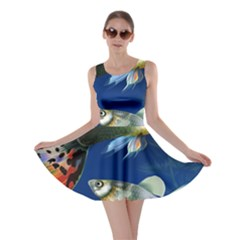Marine Fishes Skater Dress by BangZart