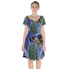 Chihuly Garden Bumble Short Sleeve Bardot Dress