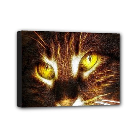 Cat Face Mini Canvas 7  X 5