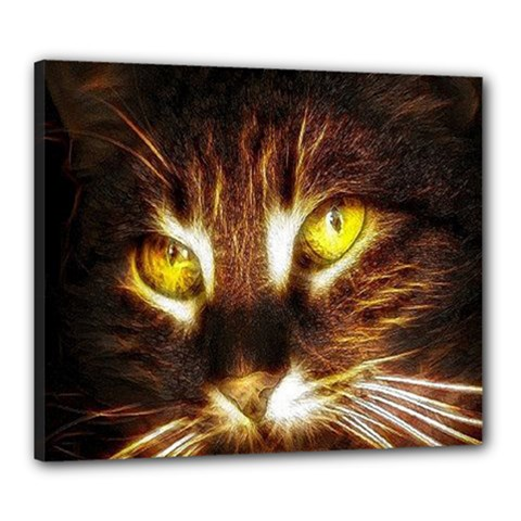 Cat Face Canvas 24  X 20  by BangZart
