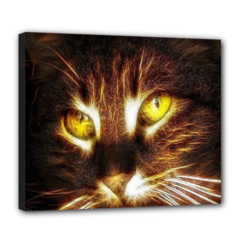 Cat Face Deluxe Canvas 24  X 20   by BangZart