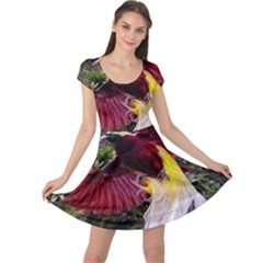Cendrawasih Beautiful Bird Of Paradise Cap Sleeve Dresses by BangZart