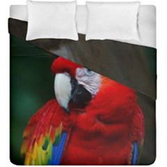 Scarlet Macaw Bird Duvet Cover Double Side (king Size)