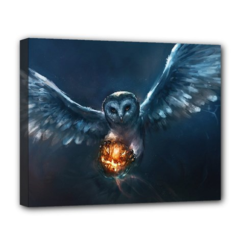 Owl And Fire Ball Deluxe Canvas 20  X 16   by BangZart