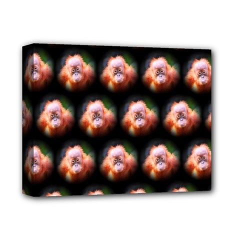 Cute Animal Drops  Baby Orang Deluxe Canvas 14  X 11  by MoreColorsinLife