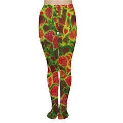 Flower Red Nature Garden Natural Women s Tights