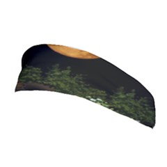 Ecology  Stretchable Headband