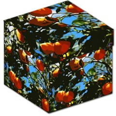Orange Tree Storage Stool 12