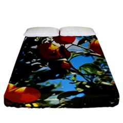 Orange Tree Fitted Sheet (california King Size)