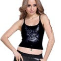 Domestic cat Spaghetti Strap Bra Top View1