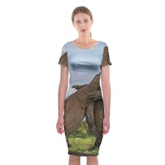 Komodo Dragons Fight Classic Short Sleeve Midi Dress