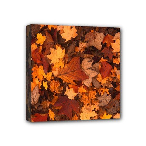 Fall Foliage Autumn Leaves October Mini Canvas 4  X 4  by Nexatart