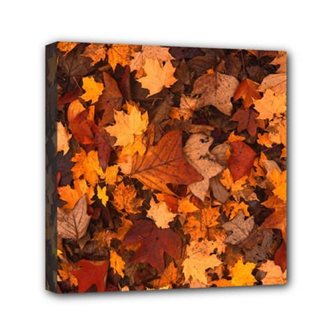 Fall Foliage Autumn Leaves October Mini Canvas 6  X 6  by Nexatart