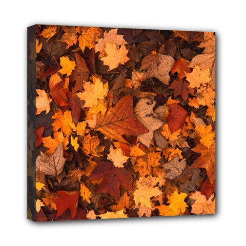 Fall Foliage Autumn Leaves October Mini Canvas 8  X 8  by Nexatart
