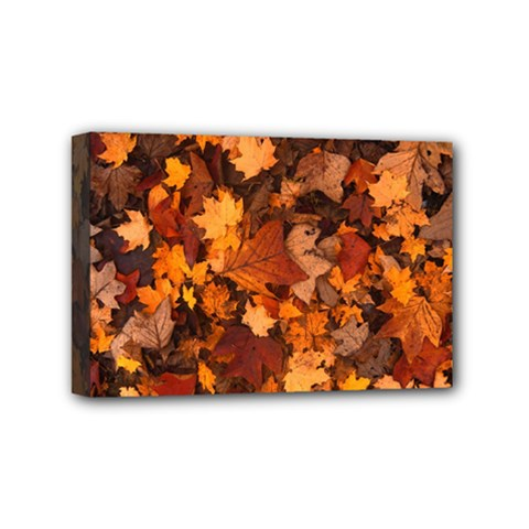 Fall Foliage Autumn Leaves October Mini Canvas 6  X 4  by Nexatart