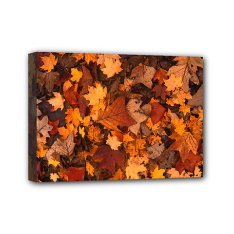 Fall Foliage Autumn Leaves October Mini Canvas 7  X 5  by Nexatart
