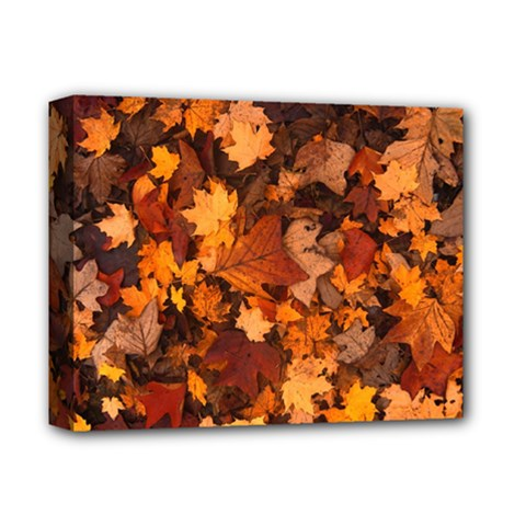 Fall Foliage Autumn Leaves October Deluxe Canvas 14  X 11  by Nexatart