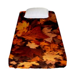 Fall Foliage Autumn Leaves October Fitted Sheet (single Size)