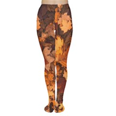 Fall Foliage Autumn Leaves October Women s Tights