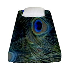 Peacock Feathers Blue Bird Nature Fitted Sheet (single Size)