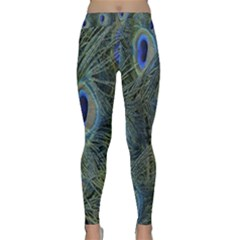 Peacock Feathers Blue Bird Nature Classic Yoga Leggings
